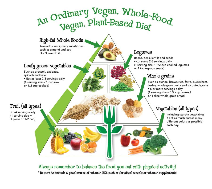 Vegan-FoodPyramid-NoURL.jpg