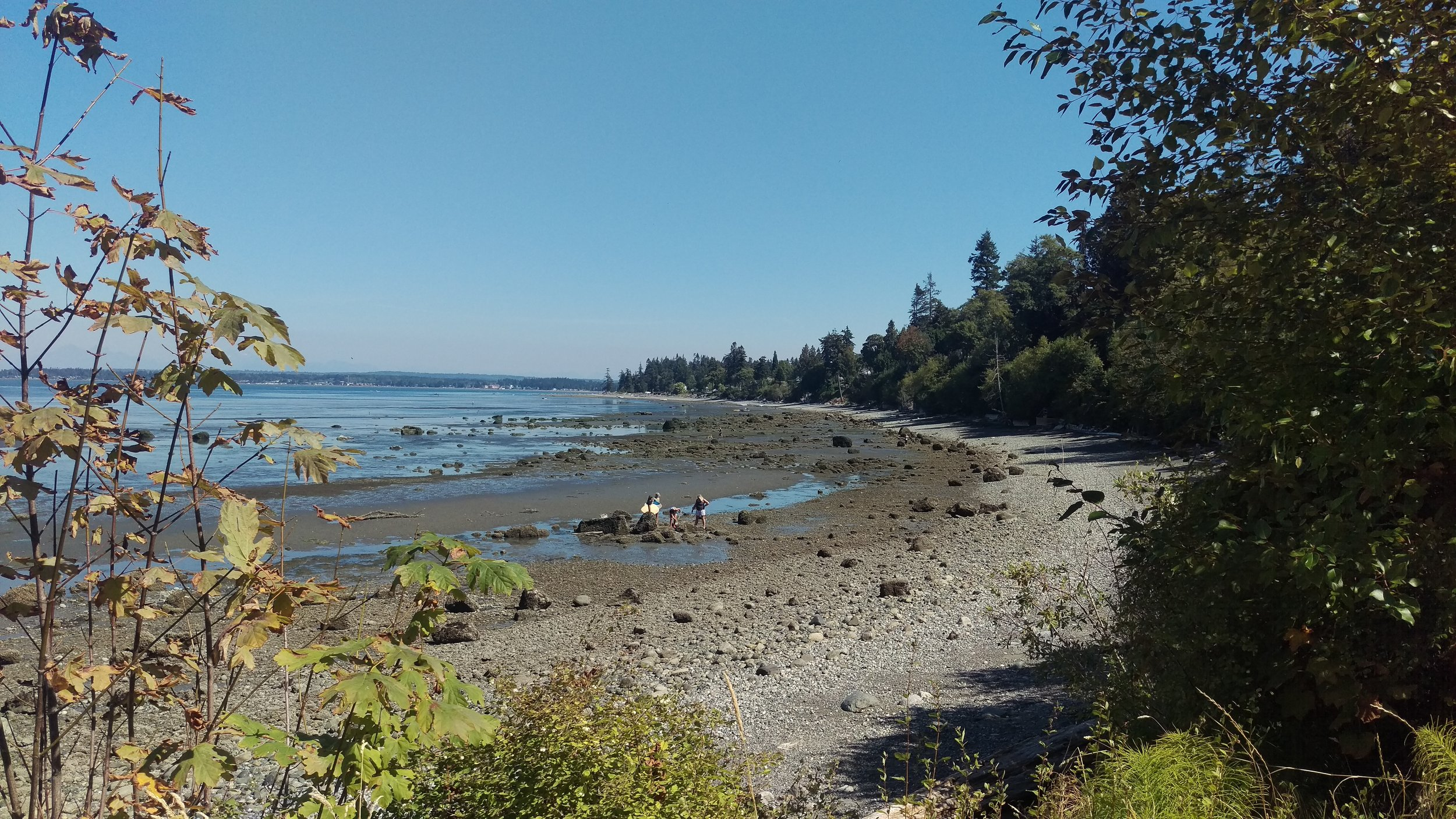 The Pacific Northwest is alright.