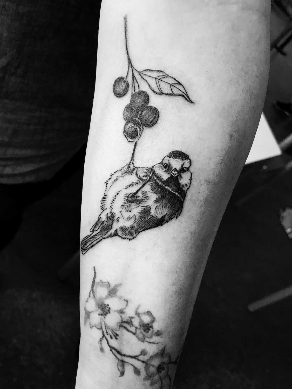 Vogel Tattoo im Studio Velbert Langenberg