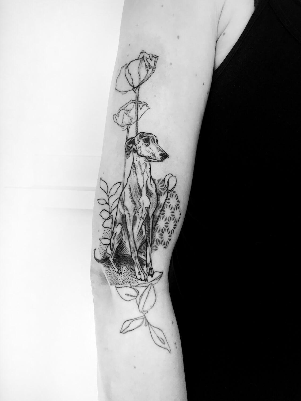 Whippet Tattoo im Studio Velbert Langenberg