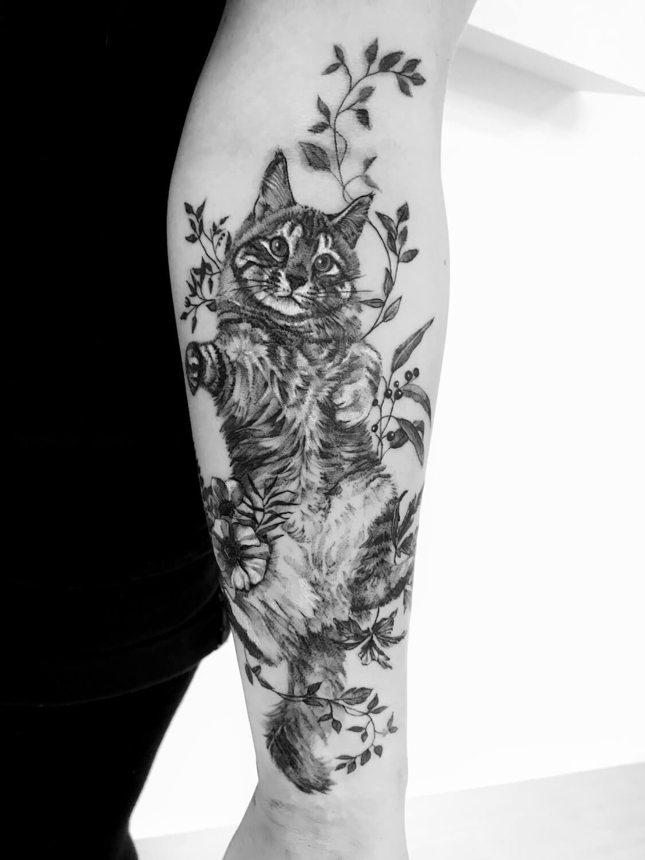 Maine Coon Katze Tattoo im Studio Velbert Langenberg