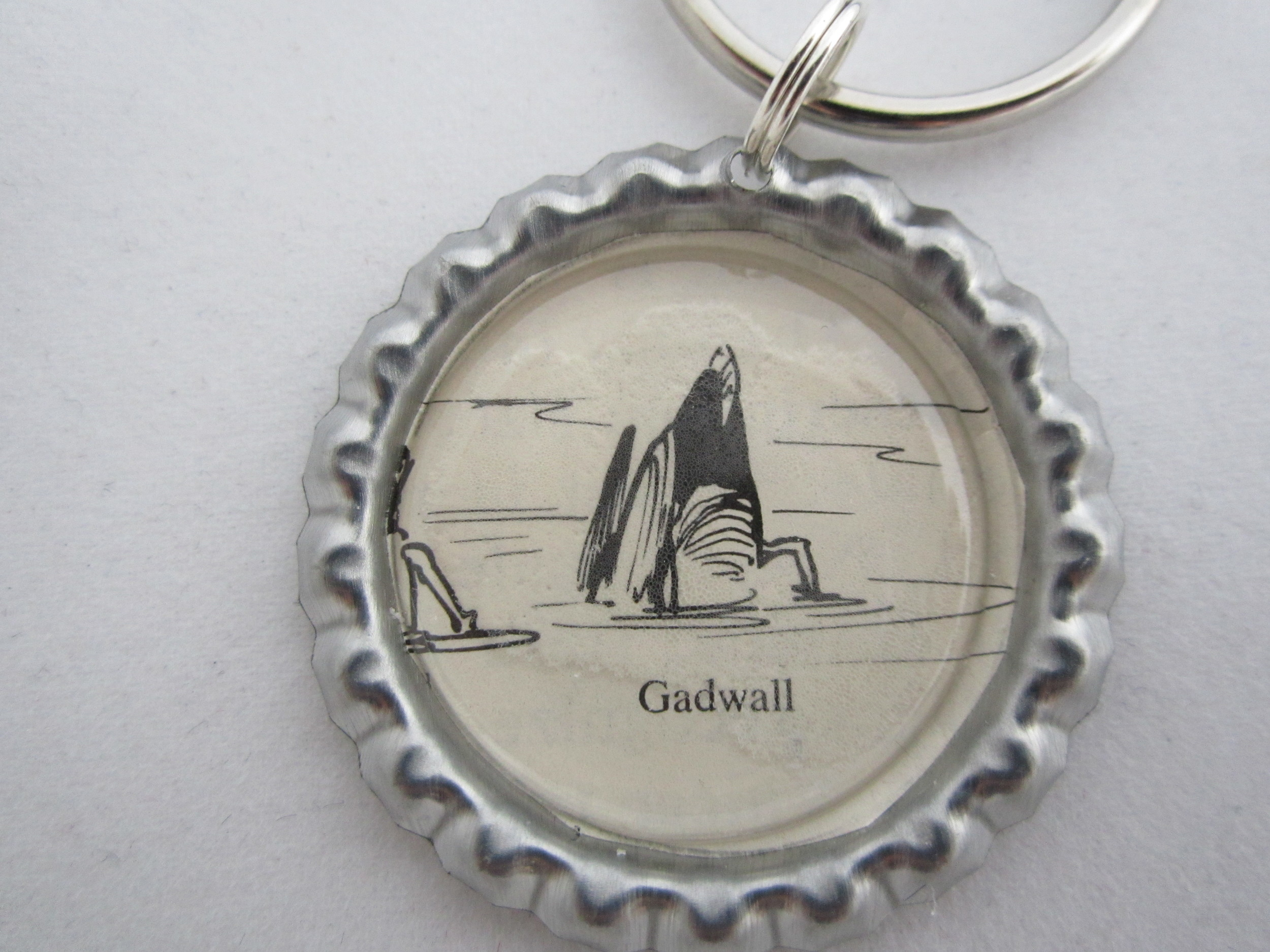 Gadwall Tail Key Chain 2.JPG