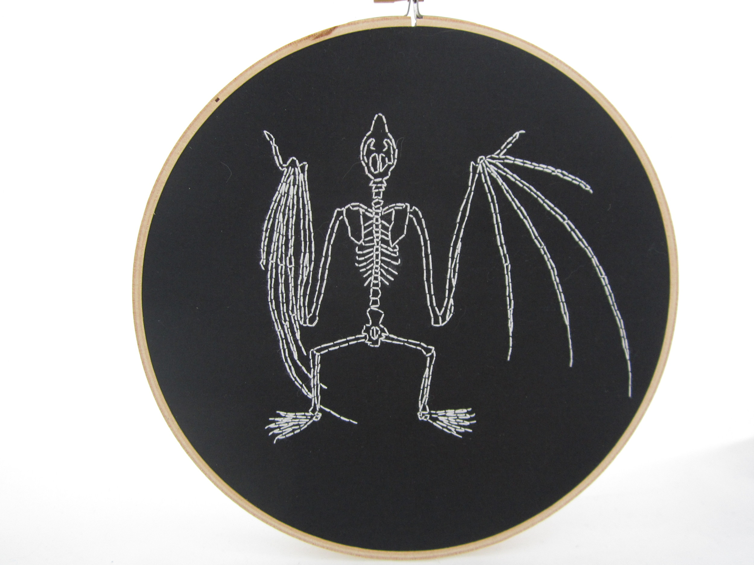 White on Black Bat Skeleton 3.JPG