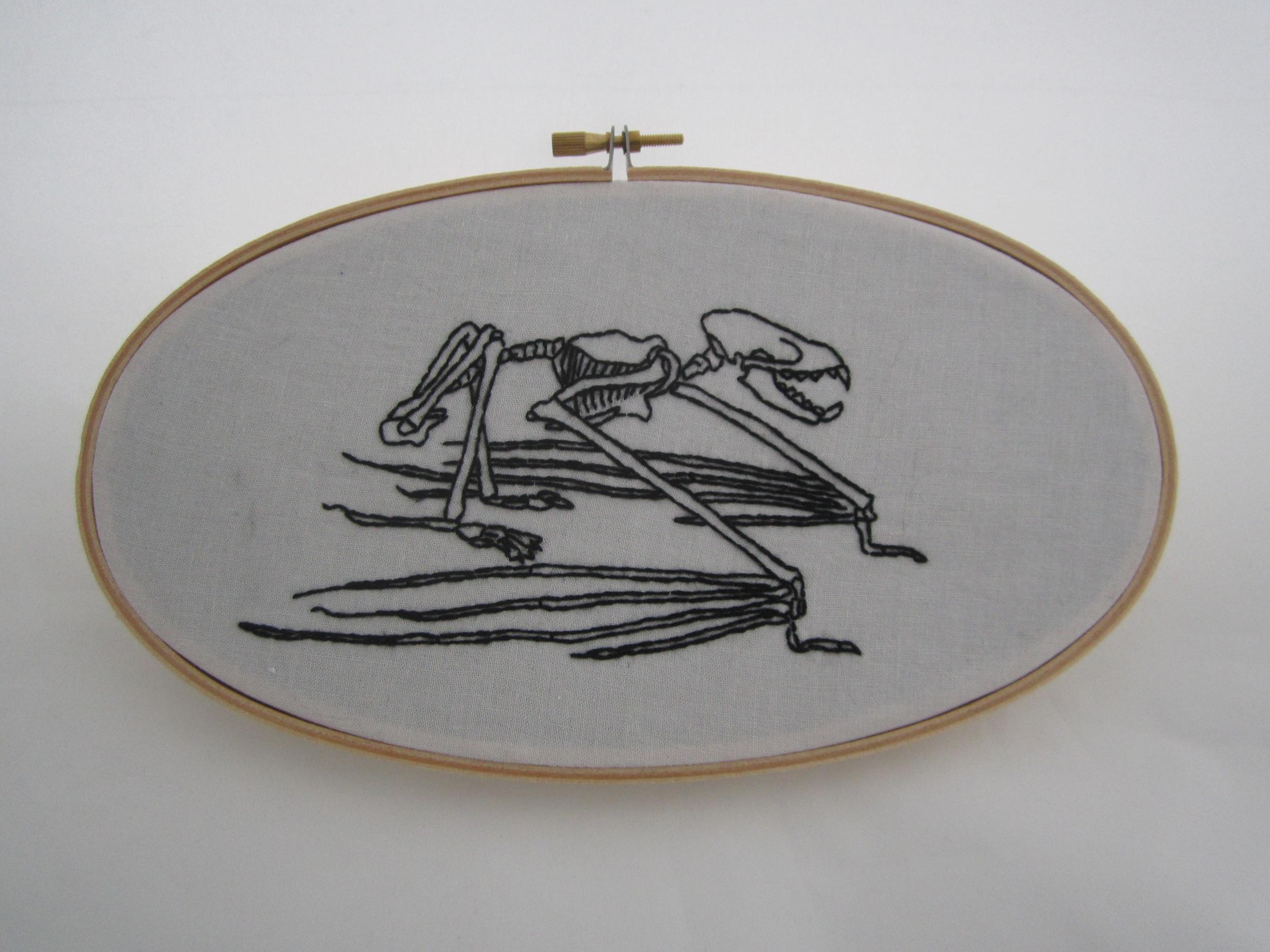 Bat Skeleton Oval 2.JPG