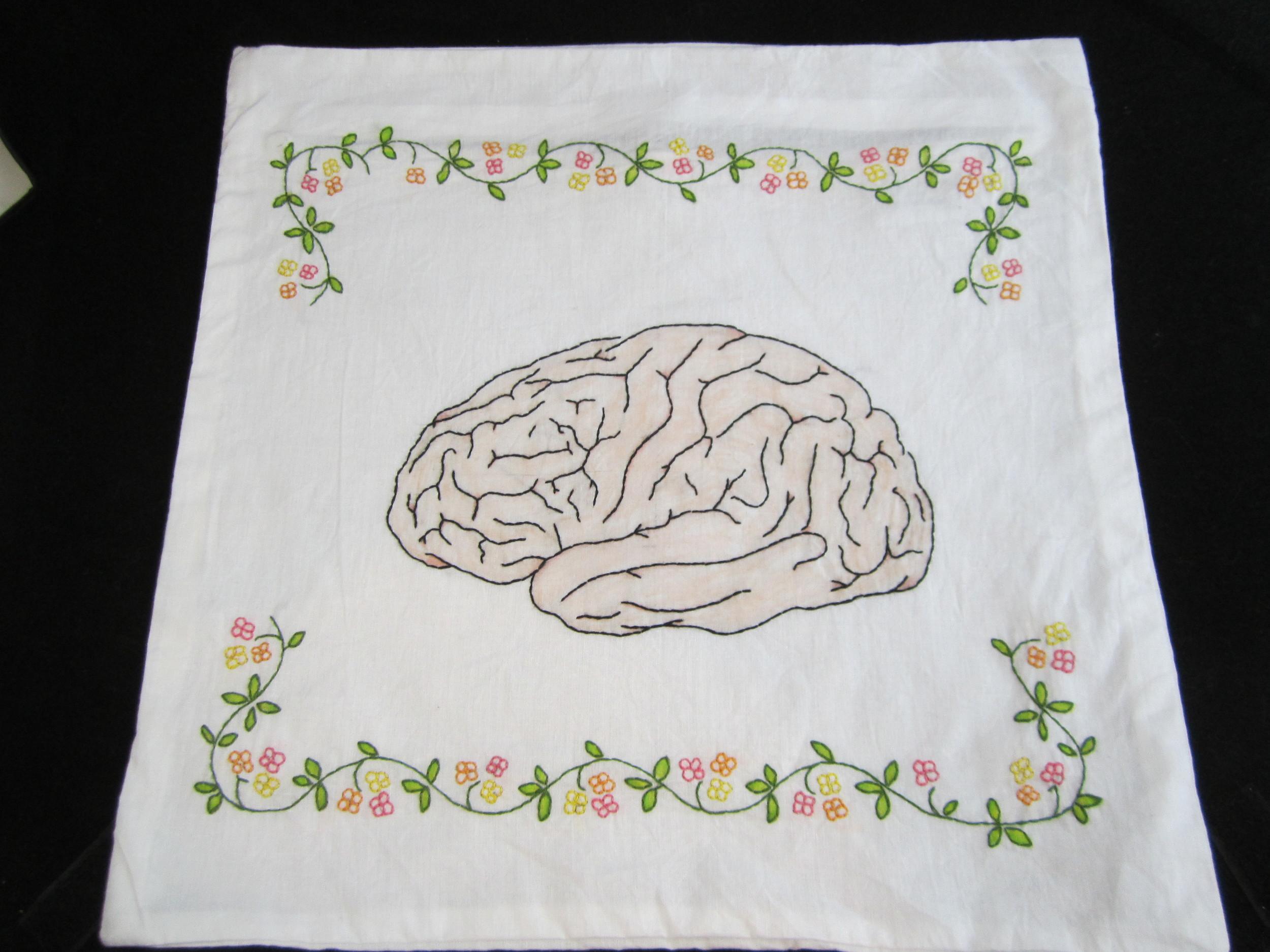 Brain Pillowcase 5.JPG