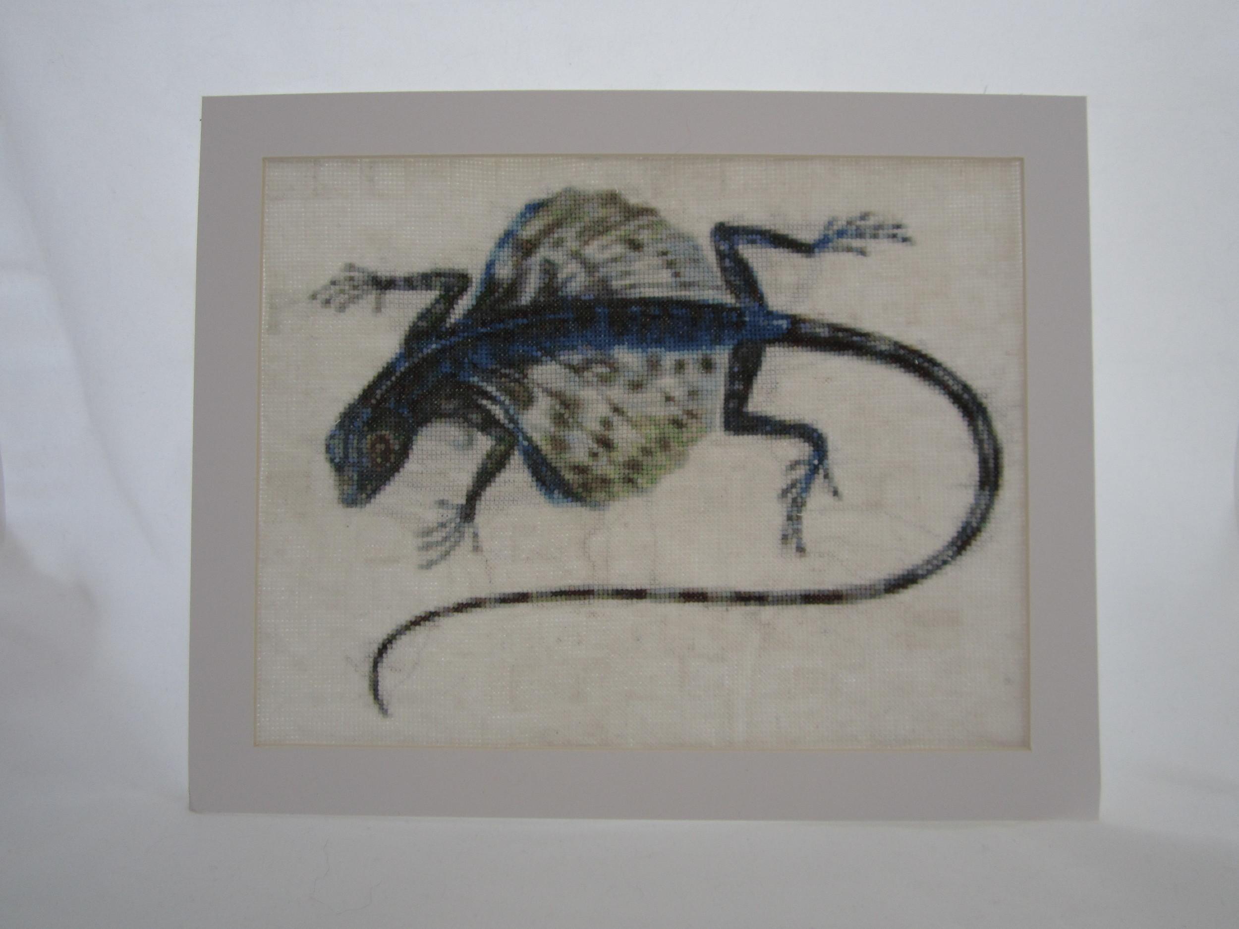 Gliding Lizard 3.JPG