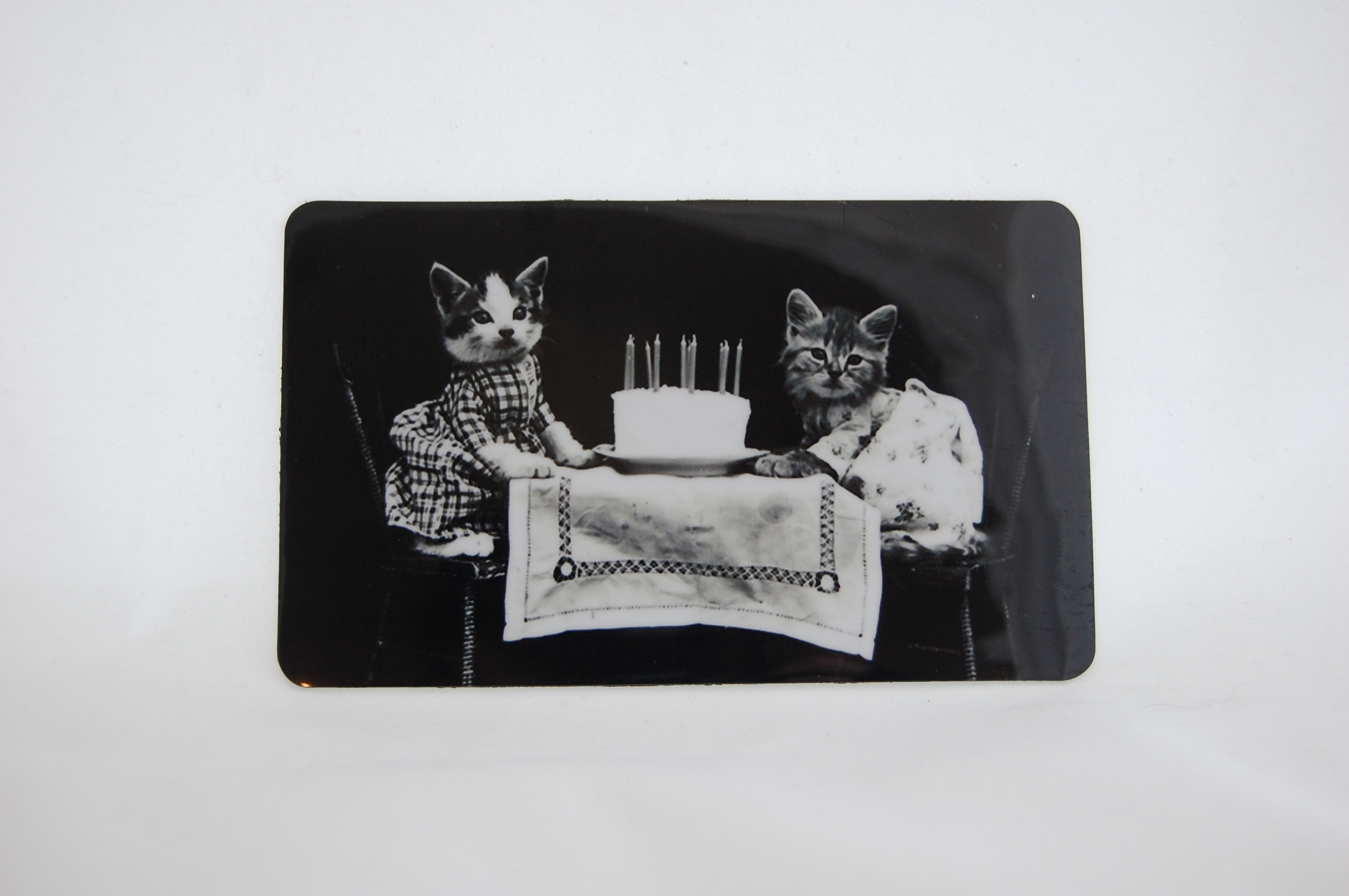 Kitten Birthday Magnet 1.JPG