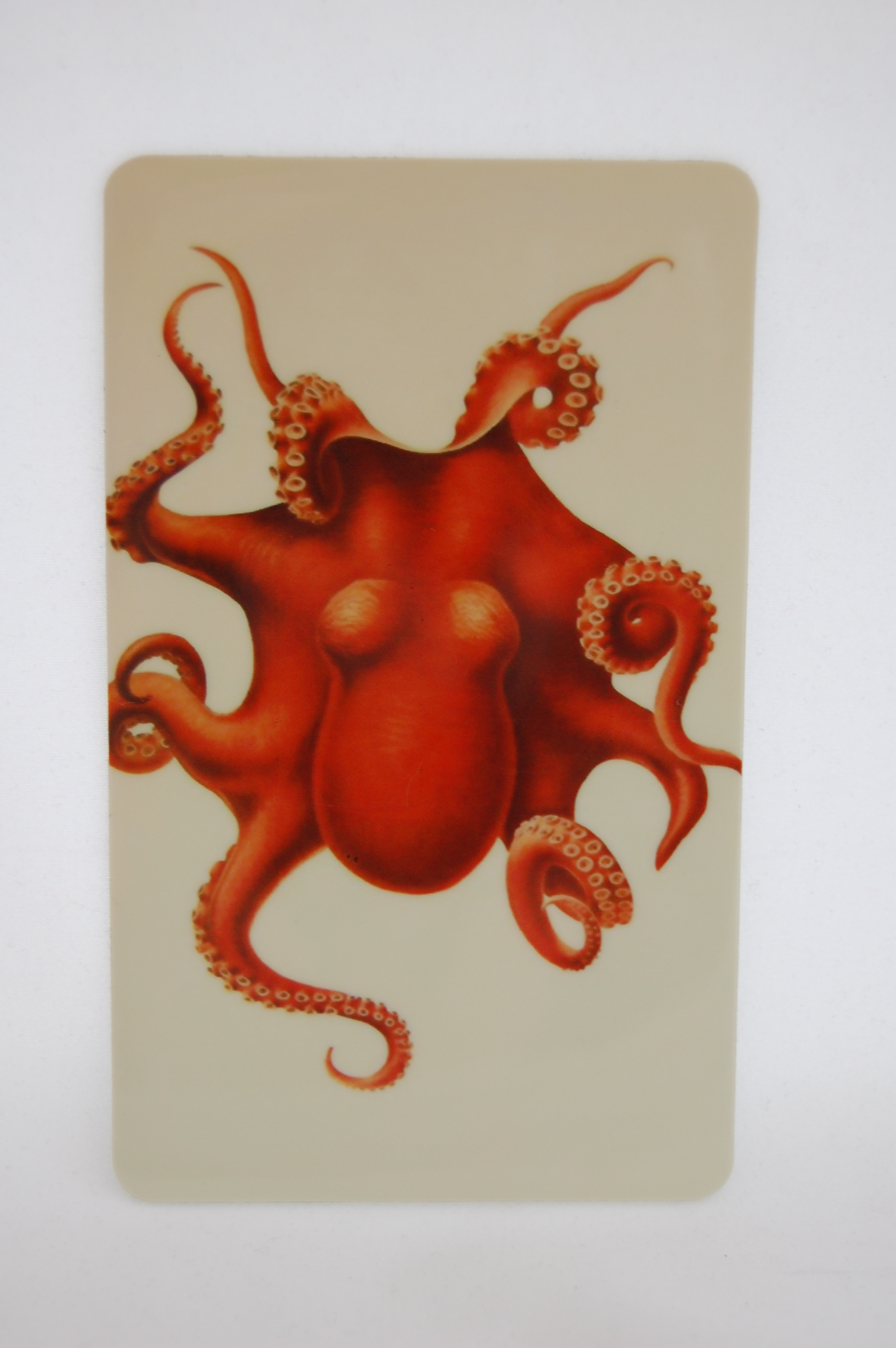 Orange Octopus Magnet 3.JPG