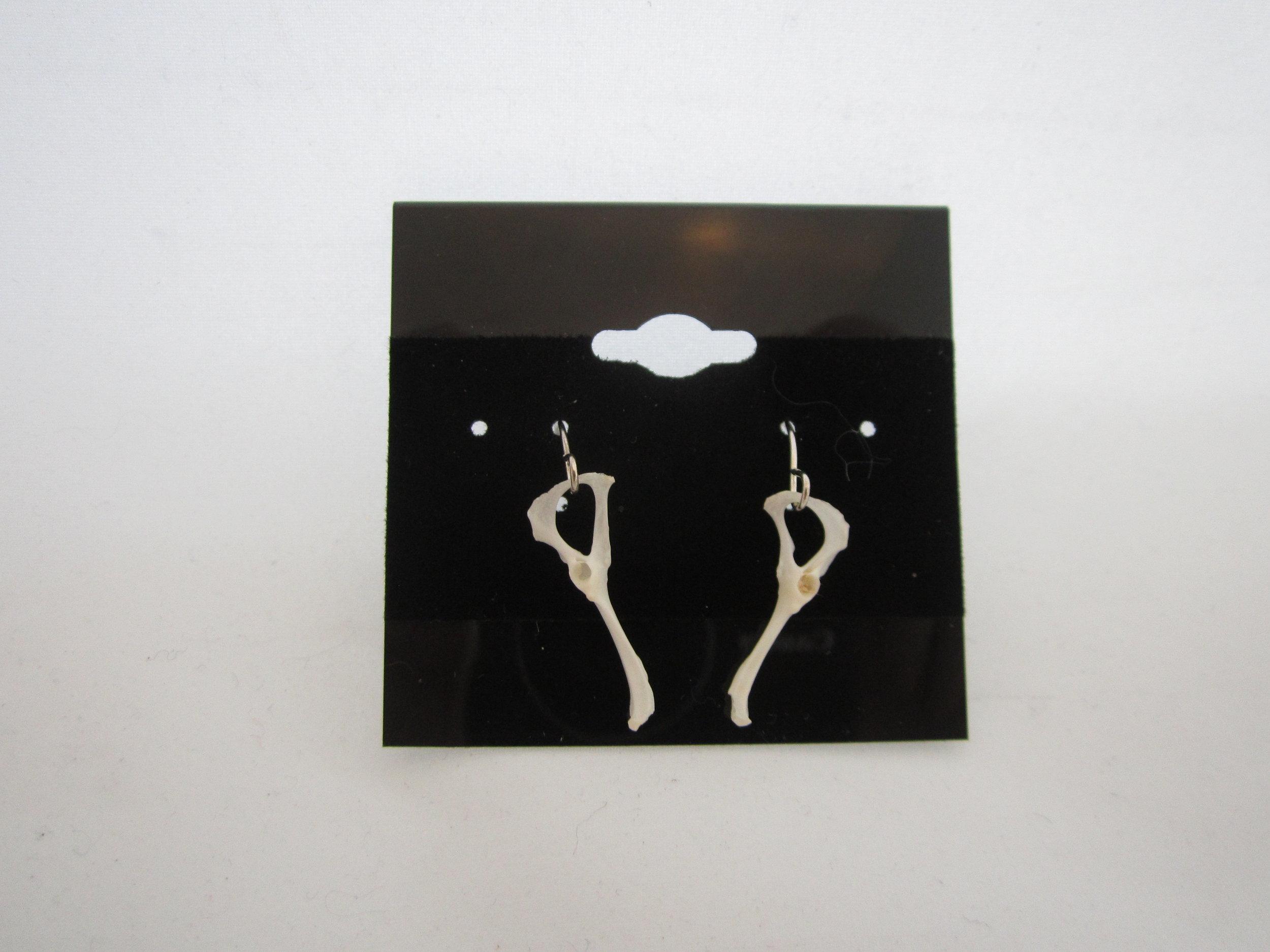 Rodent Bone Earrings 1.JPG
