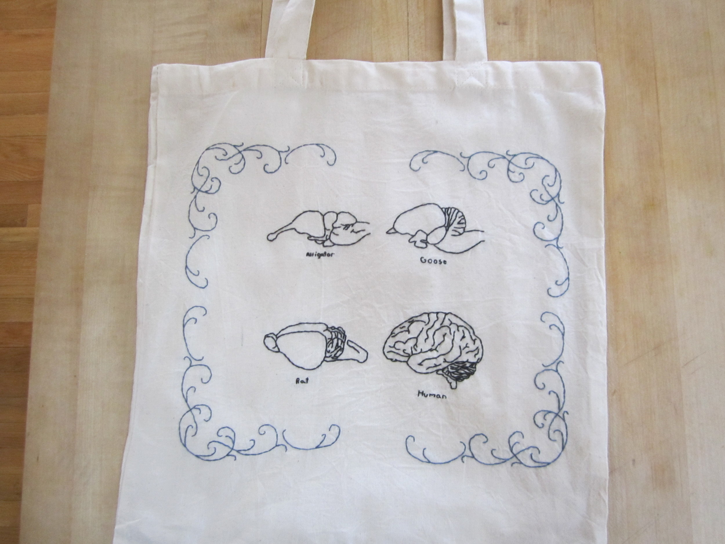 Comparative Brains Tote 2.JPG