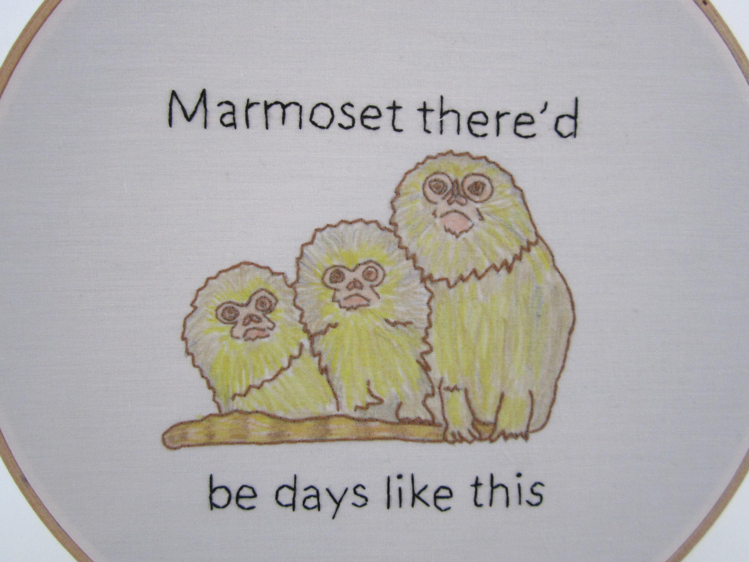 2nd Marmoset 2.JPG