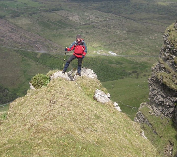 """The Rare """"Tea Leaf Willow"""" plant found on North Face Gully Benbulben, overlooking the    Gortarowey    Walk .  This rare Irish Willow is only found on Benbulben and is a relic from the Ice Age."""