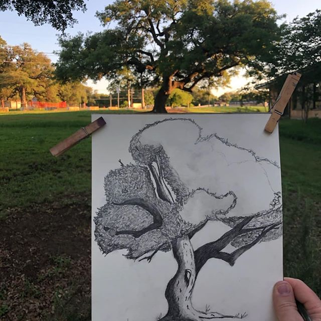 Sketching trees on the lawn of the #budalibrary with @gena.destri yesterday. 🎨🌳 Visit budalibrary.org for latest info on upcoming classes. #artatthelibrary #budatx #lifelonglearning 📸 @thefrozenghost