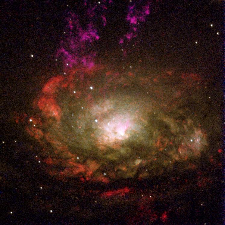 Circinus.galaxy.750pix.jpg
