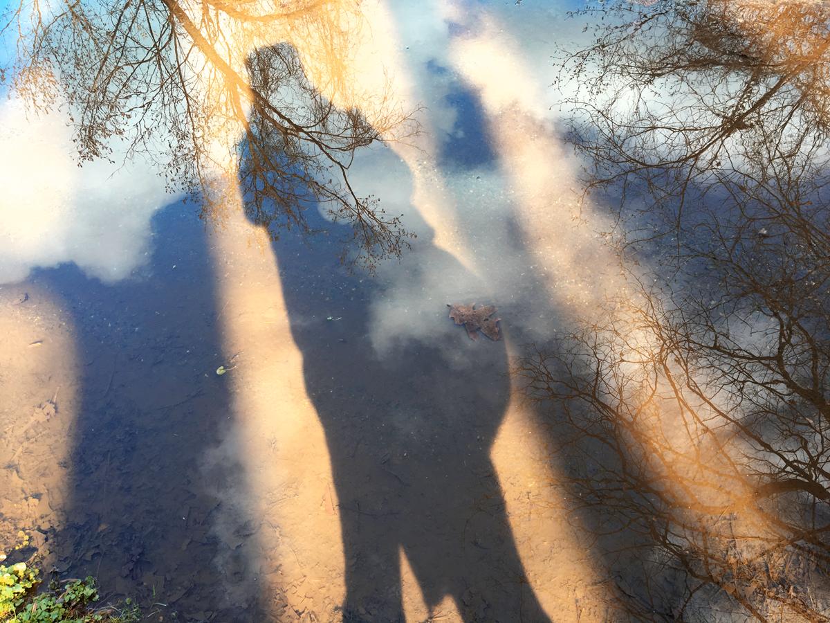 CreekShadow.jpg