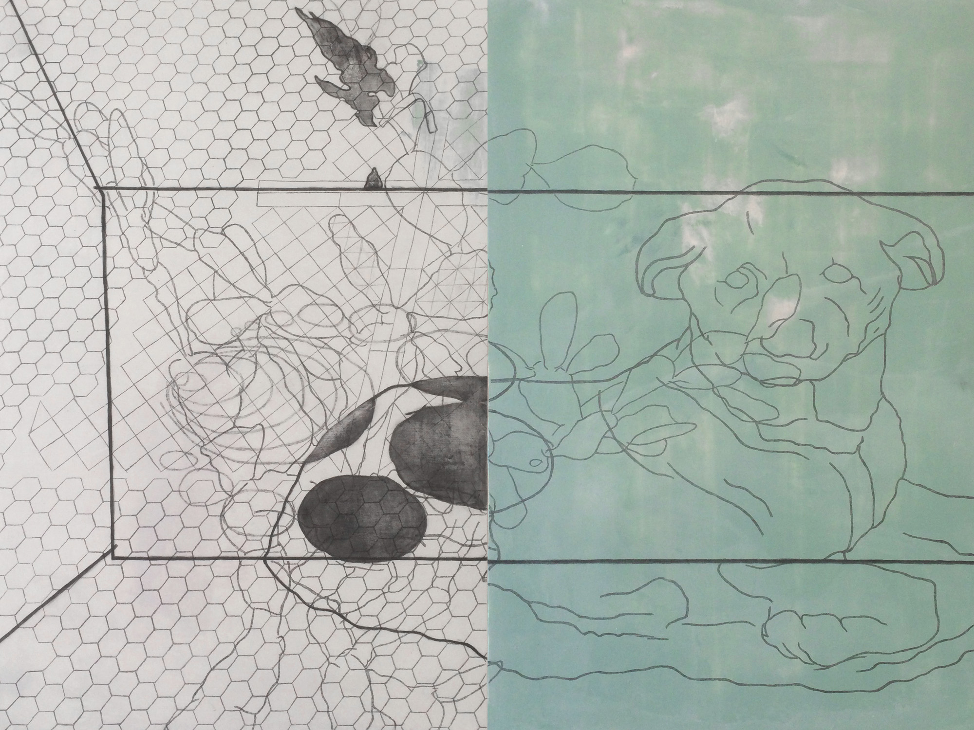 Coffin for Dian Fossey : detail | graphite and acrylic on panel | 36INx48IN