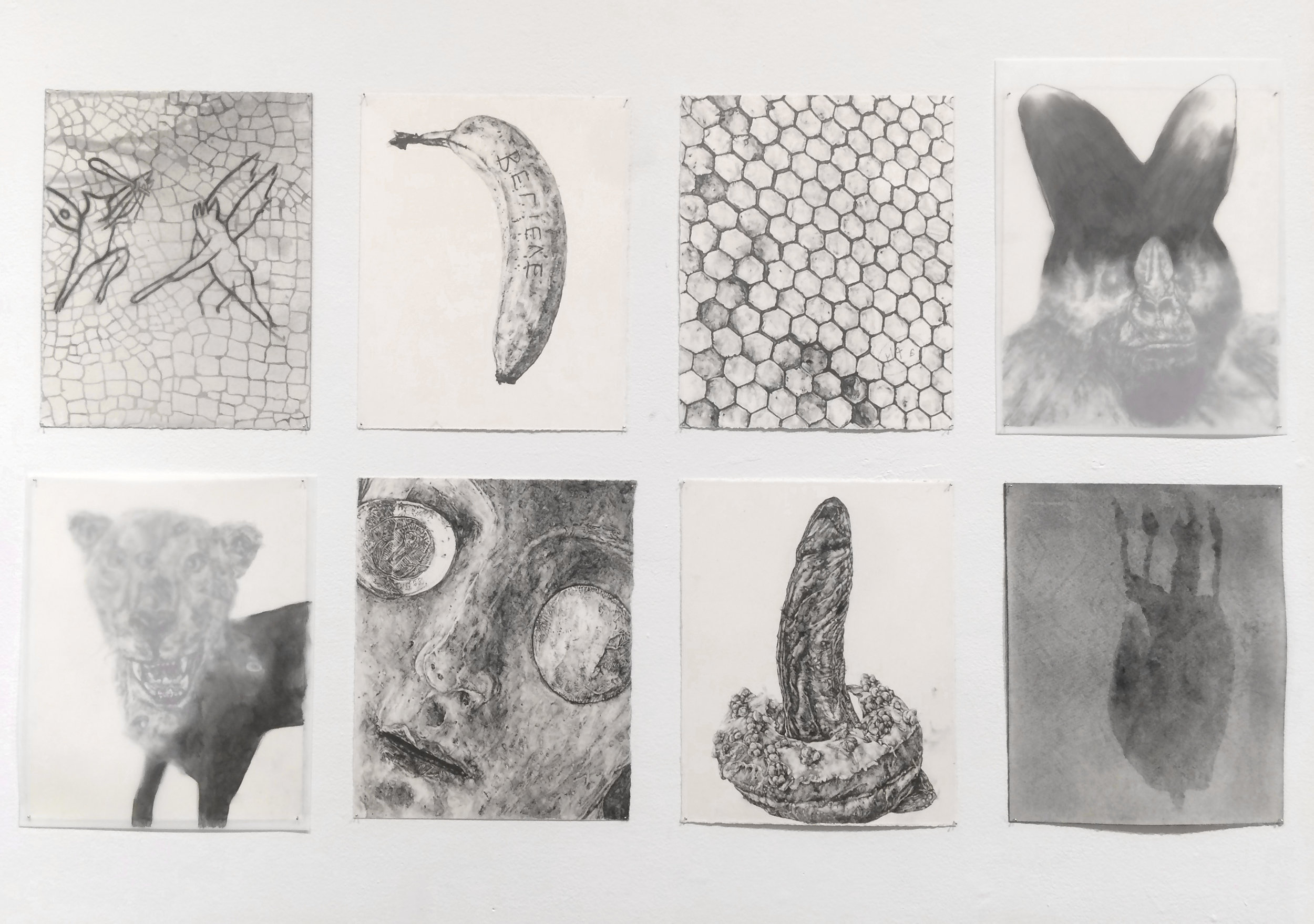 I'll draw you a fly  | installation: Field Projects Gallery