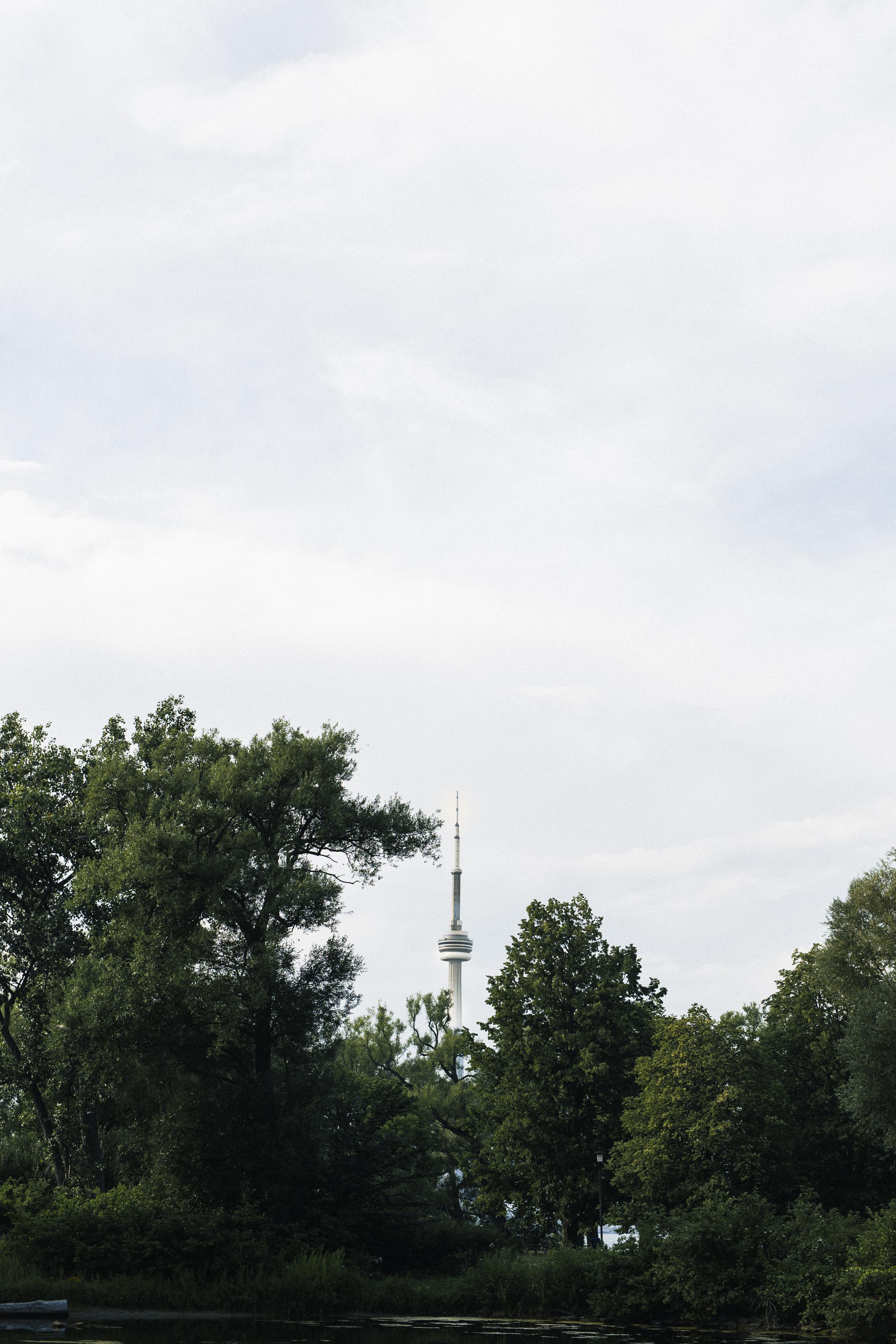 RV-1-7369.jpg