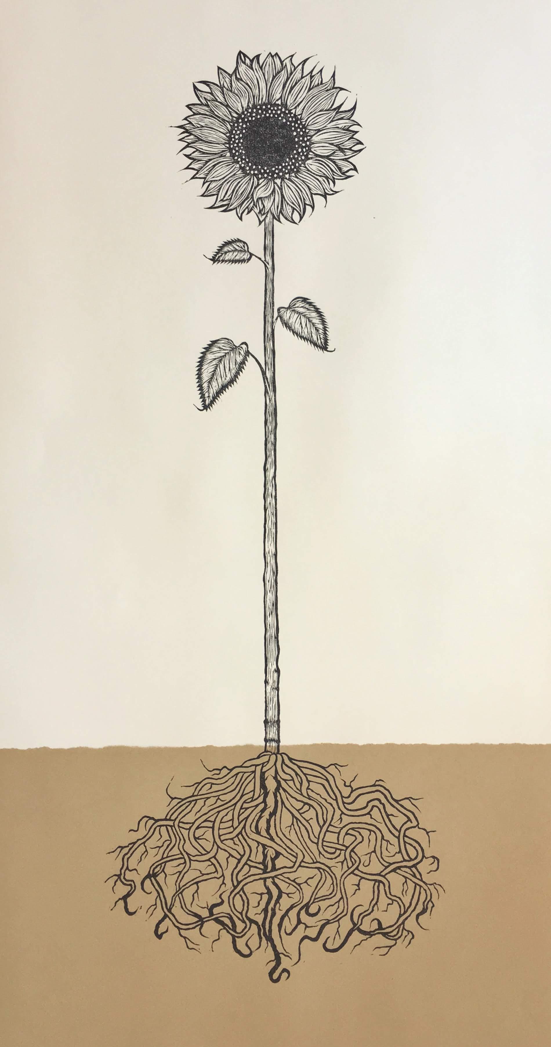 """Sunflower, 22""""x40"""", Luke Funk"""