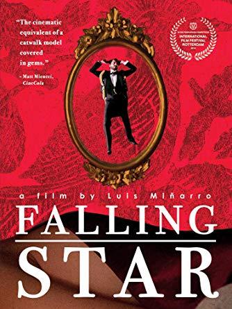 FallingStarDVD.jpg