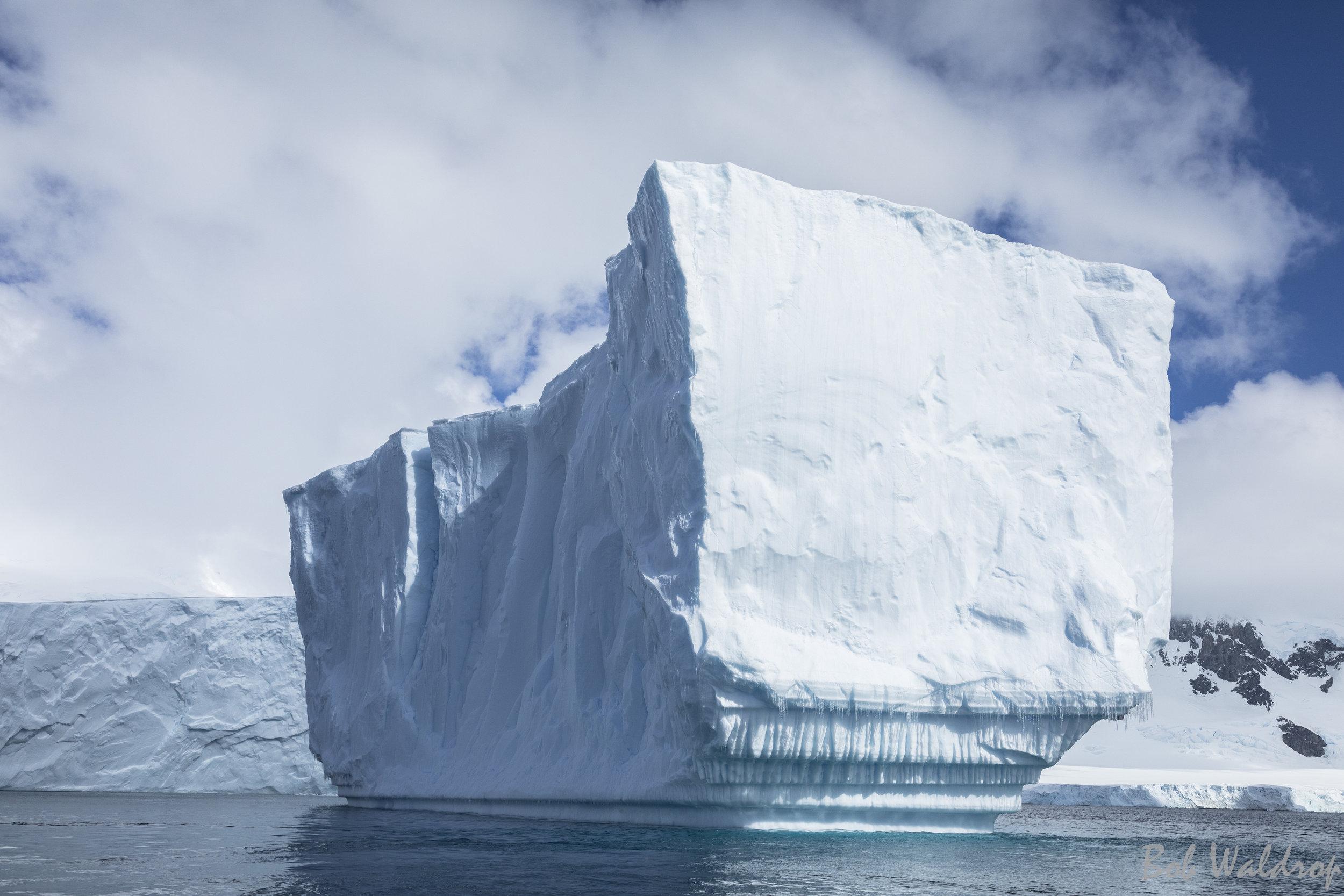 Antarctica-6295.JPG