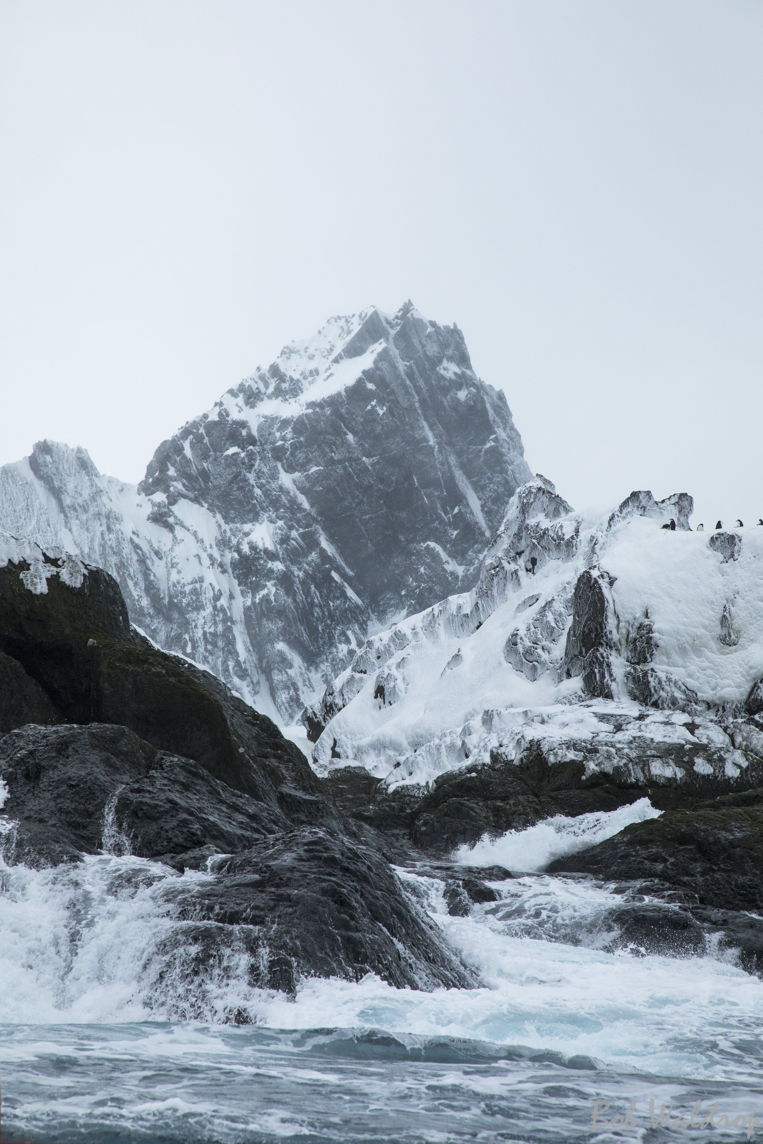 Antarctica-8765-Edit.JPG