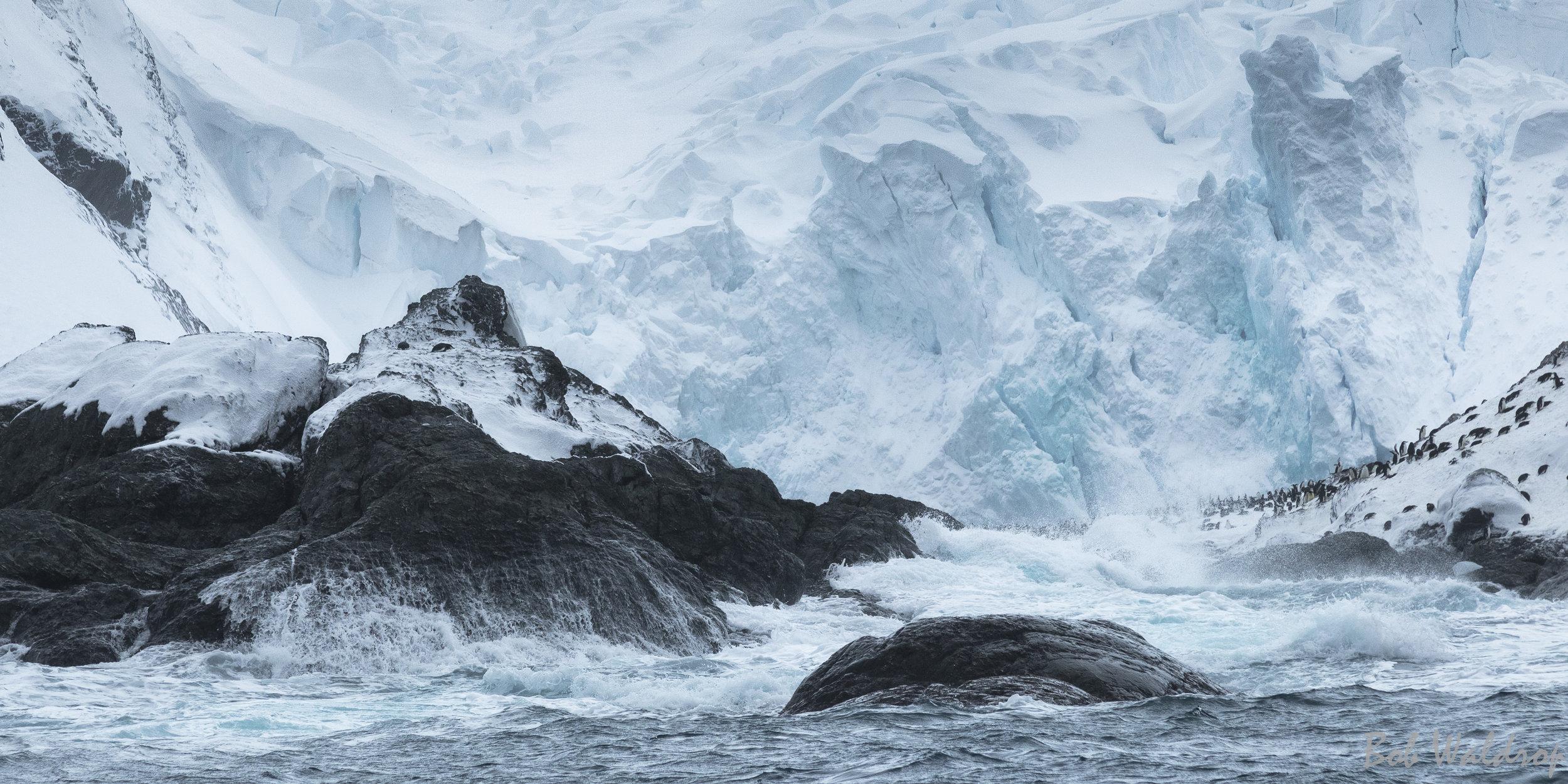 Antarctica-8904.JPG