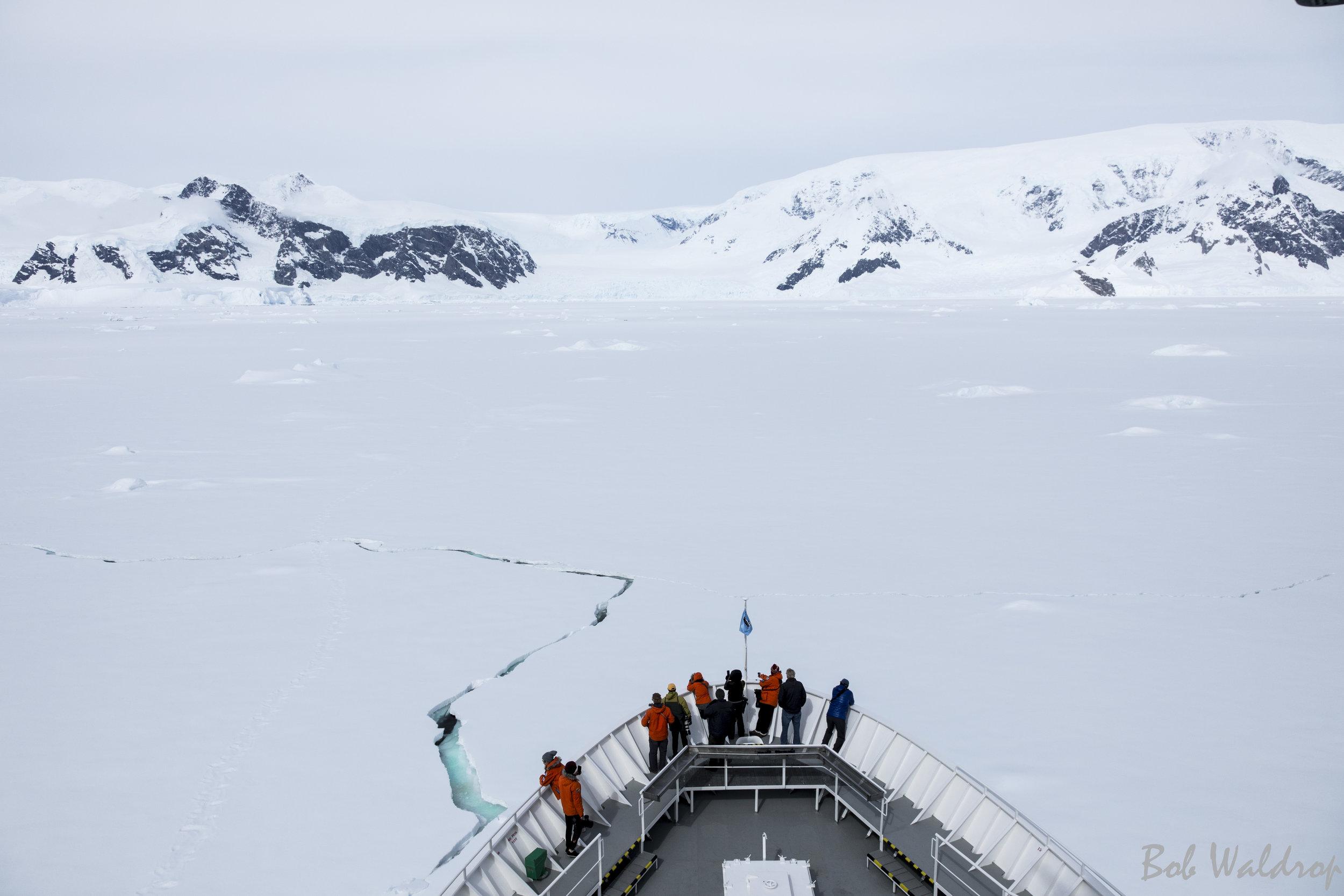 Antarctica-9851-2-Edit.JPG
