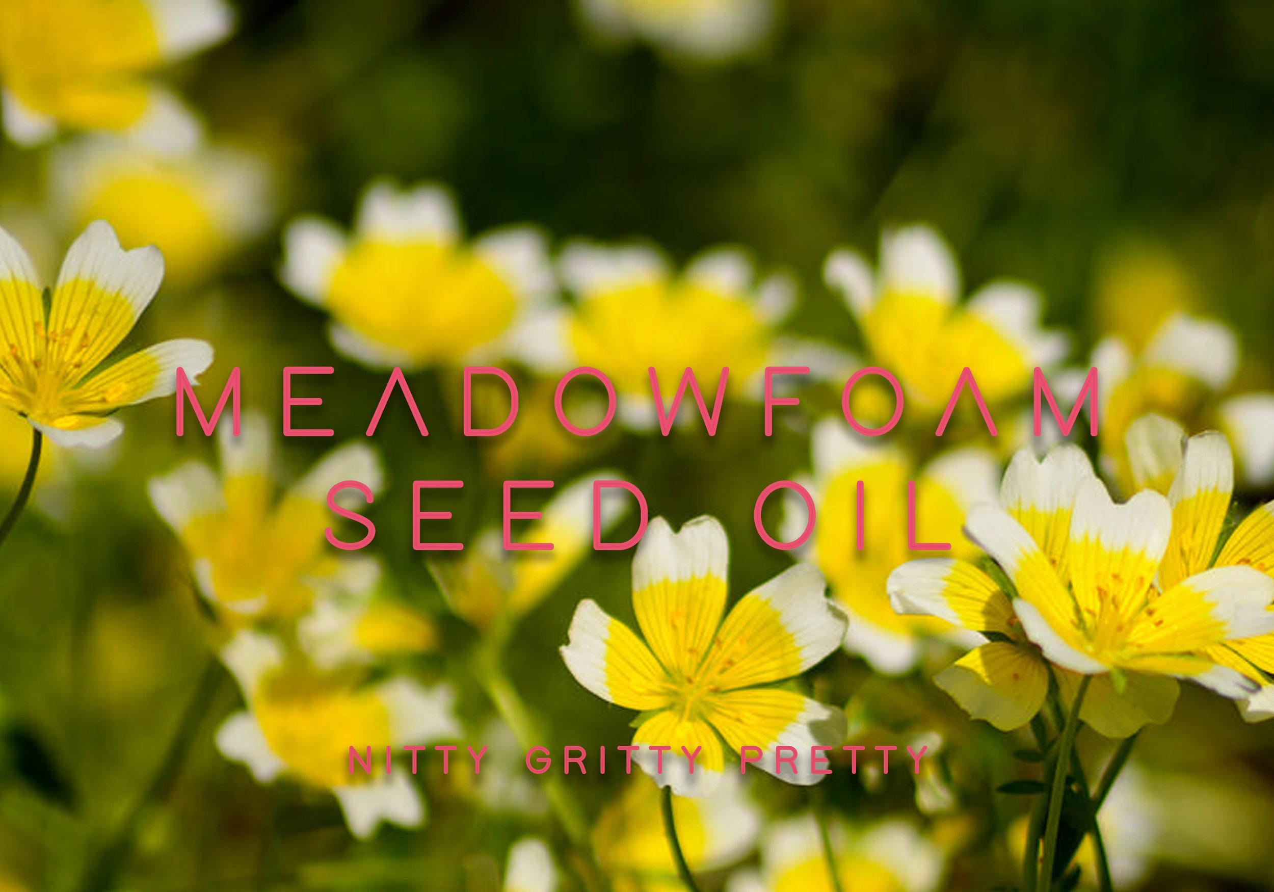 meadowfoamseed.jpg