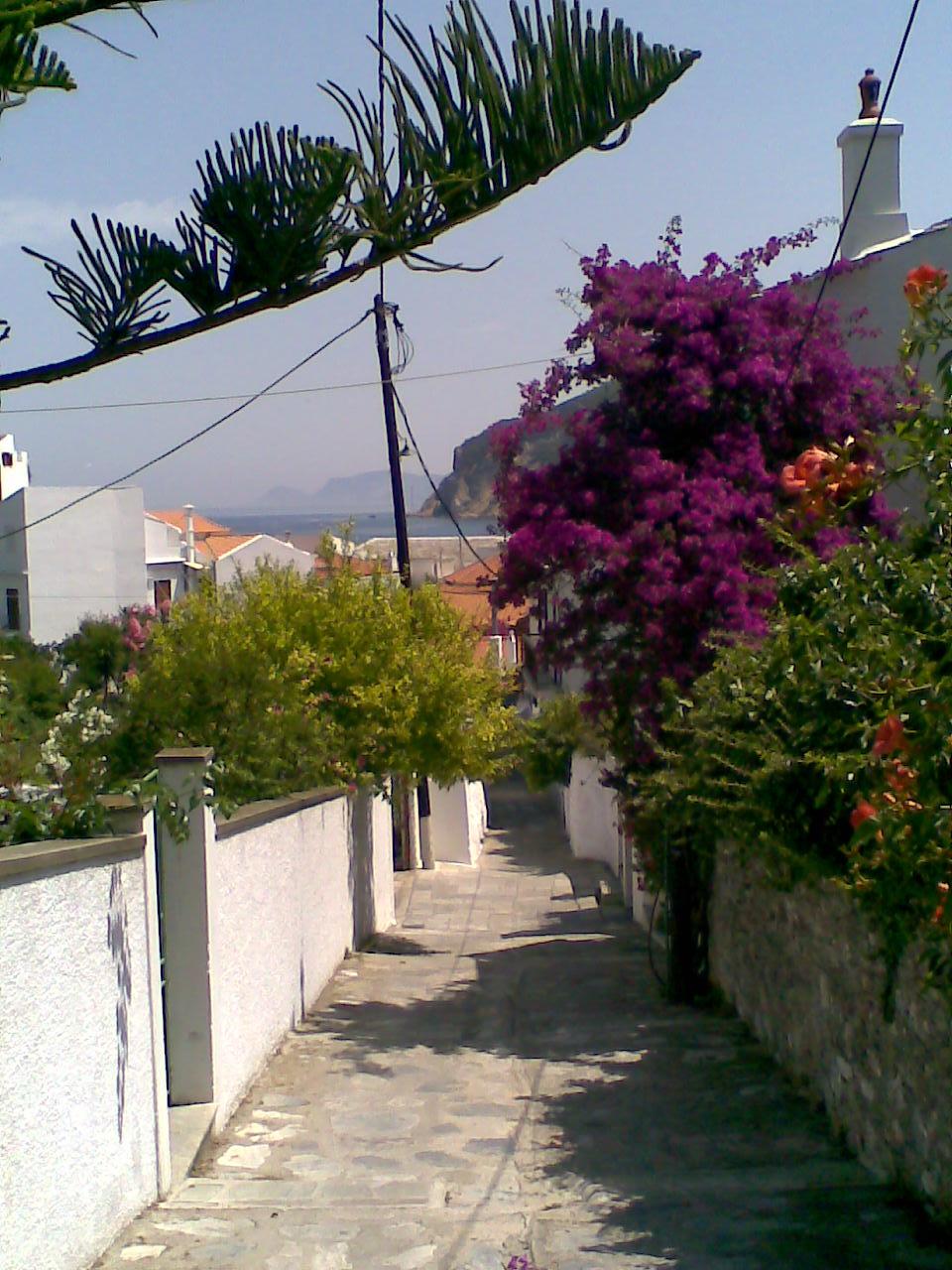 Above Skopelos Town.jpg
