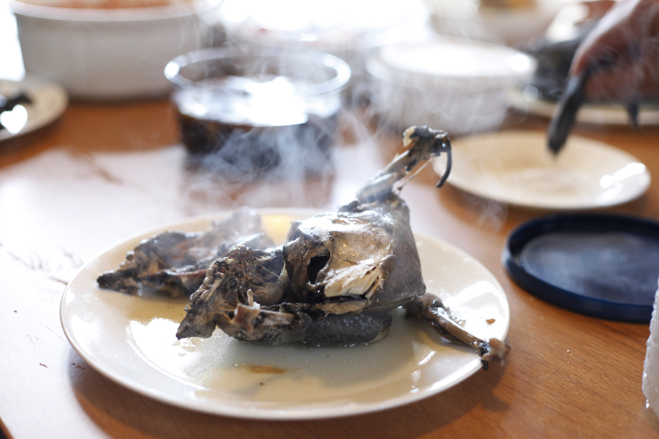 Steaming black chicken, pulled from Korean gingseng soup to cool. It is believed to cure sickness.