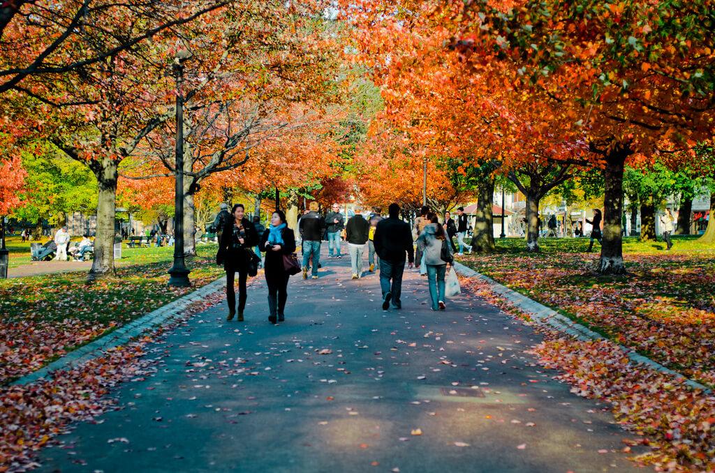 Boston Common in Autumn