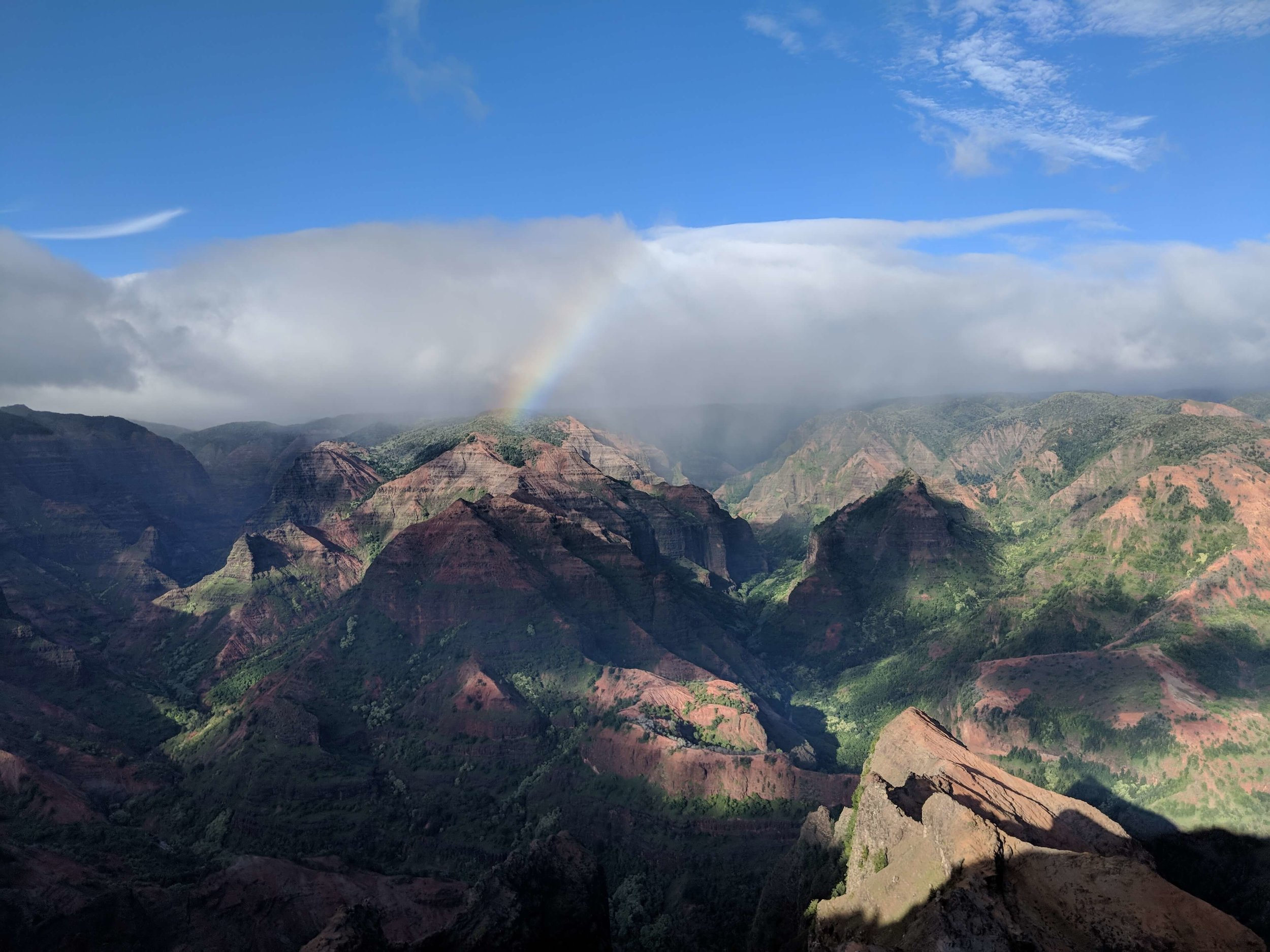 Waimea Canyon State Park - Hiking Trails 16.jpg