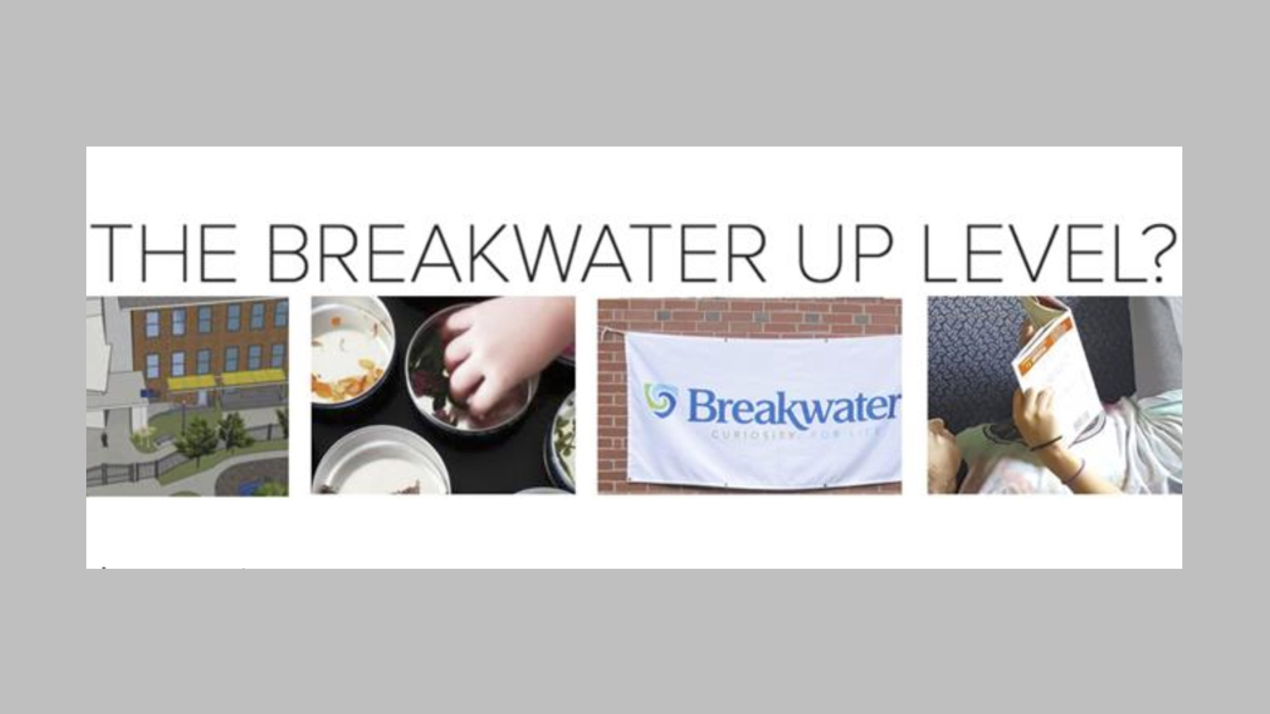 February 2017 - This month's Newsbreak includes: Up Level 2017 | 7/8 + Civics | Diversity PD | Welcome! | Summer at Breakwater | Events