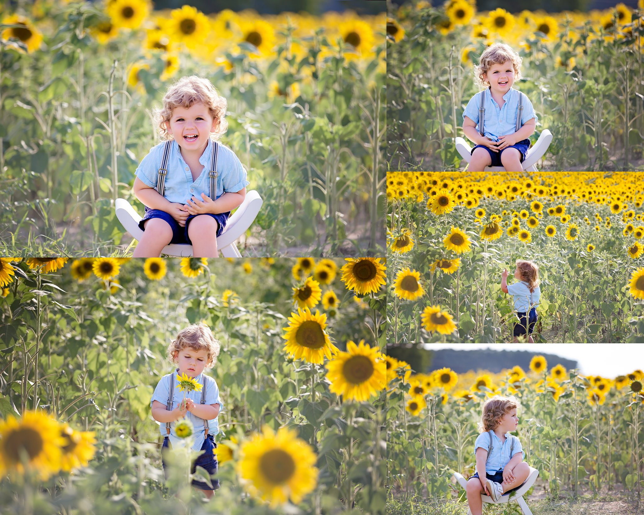 Raleigh_Sunflower_Mini_Session.jpg