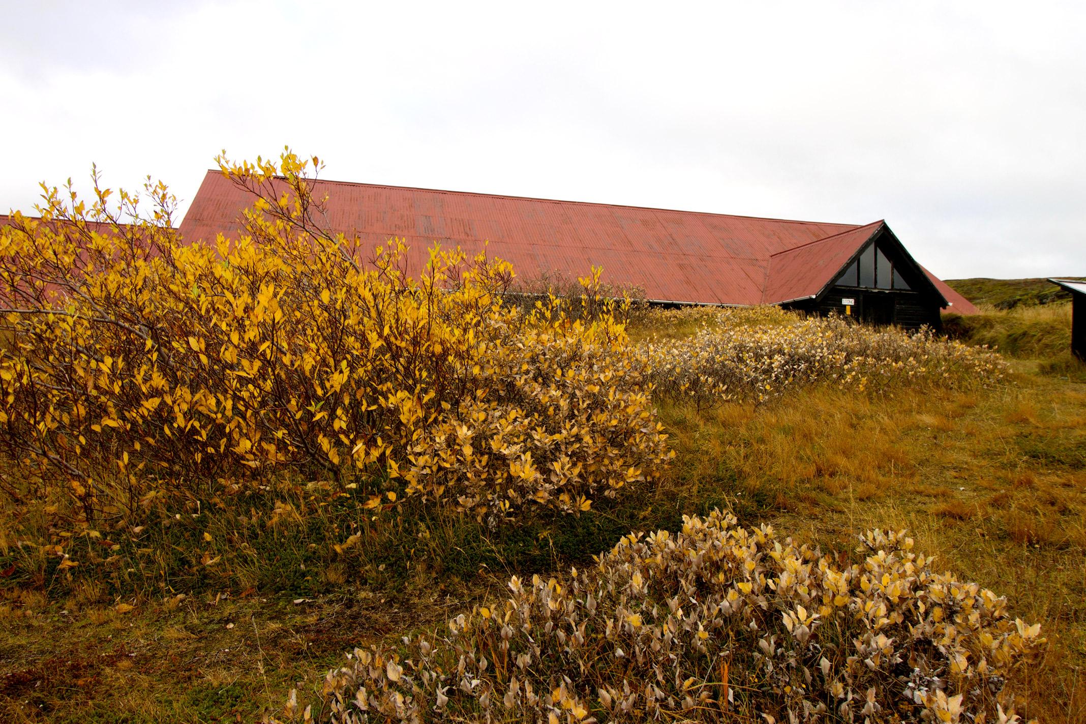 Stong-Iceland-Ruins-Exterior.jpg