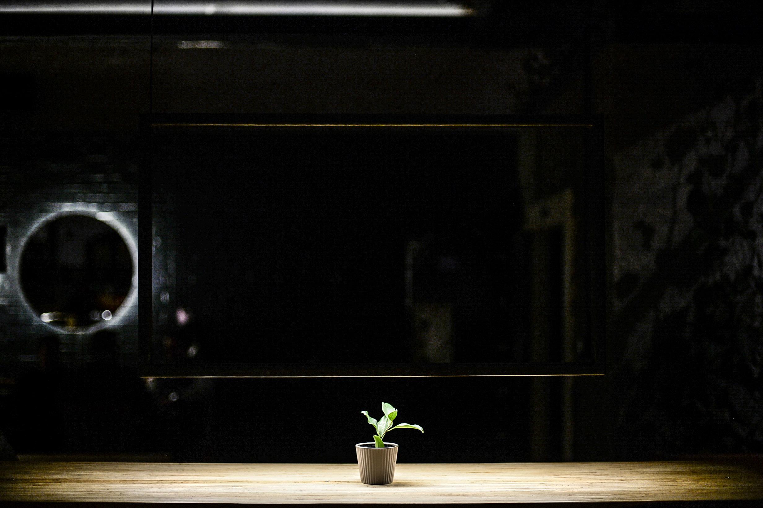 frame light.jpg