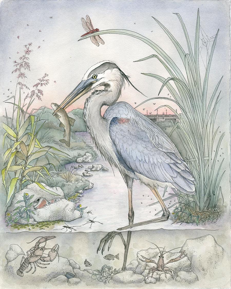 Margaret Gallagher Heron Transverse Tales.jpg