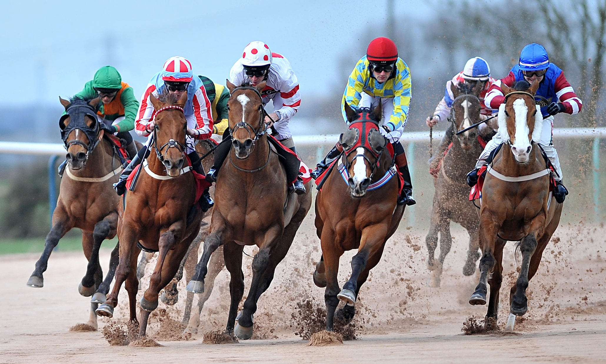 Phenne_SportHospitality_HorseRacing
