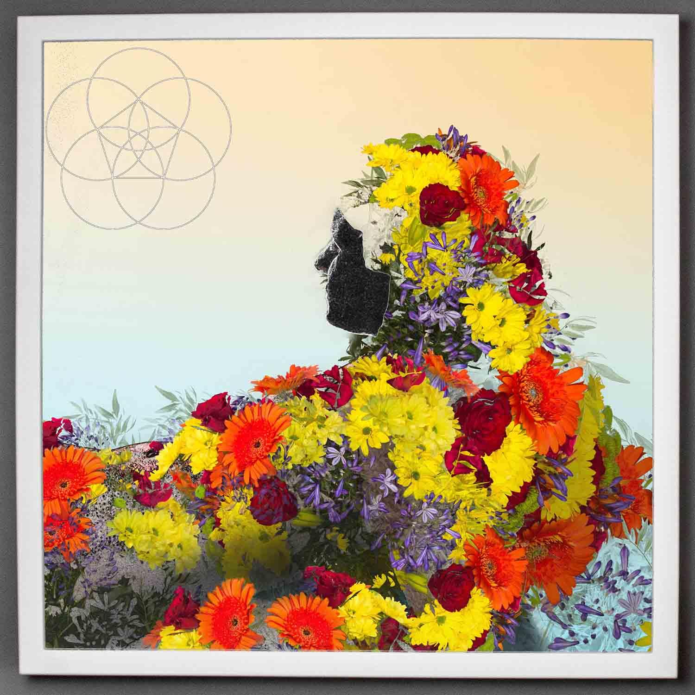 visual-flux-soul-bloom-bigframe.jpg