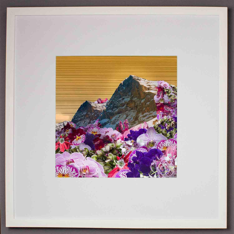 visual-flux-floral-mountains-medframe.jpg