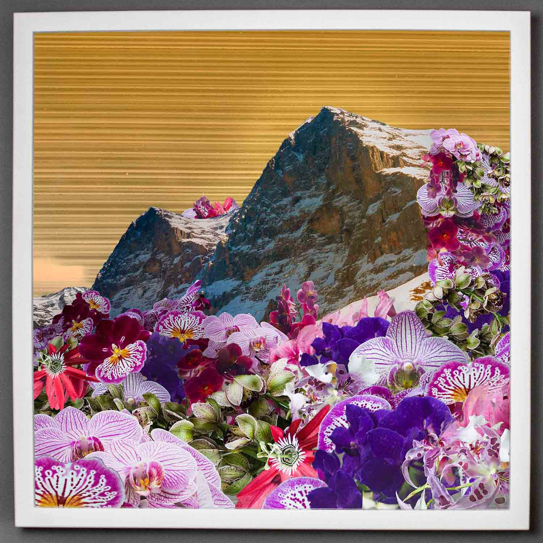 visual-flux-floral-mountains-bigframe.jpg