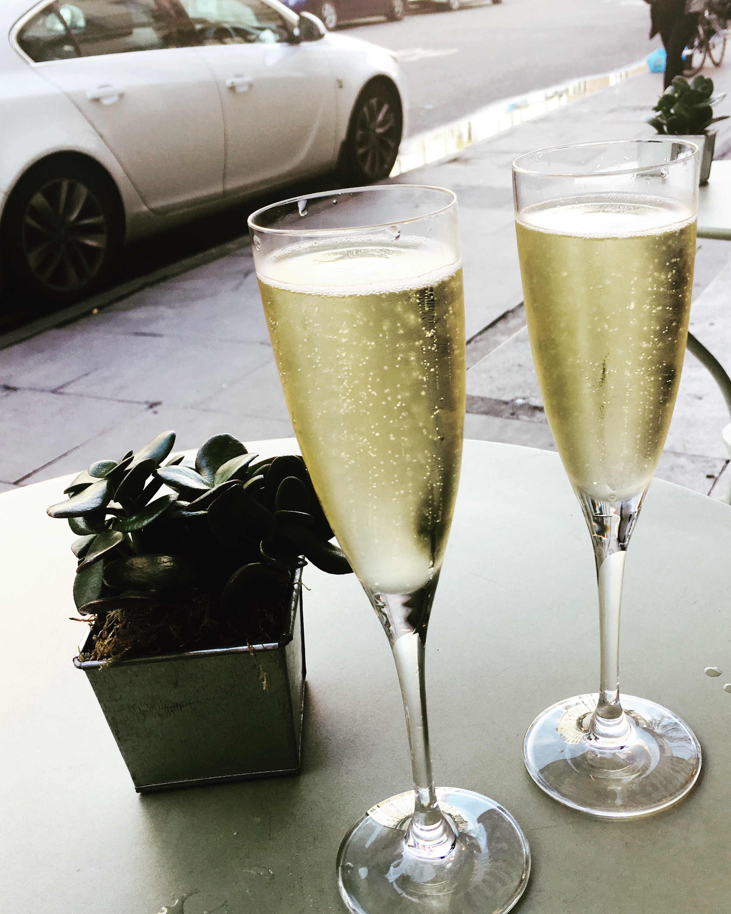 Our very swanky celebrations upon launching the website
