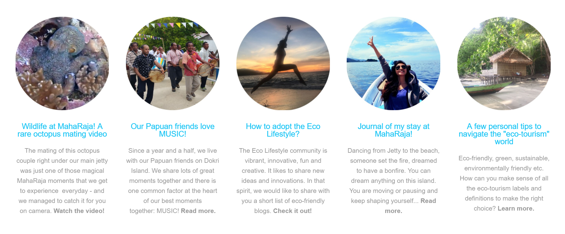 MahaRaja Eco Dive Lodge Website by The EMMS