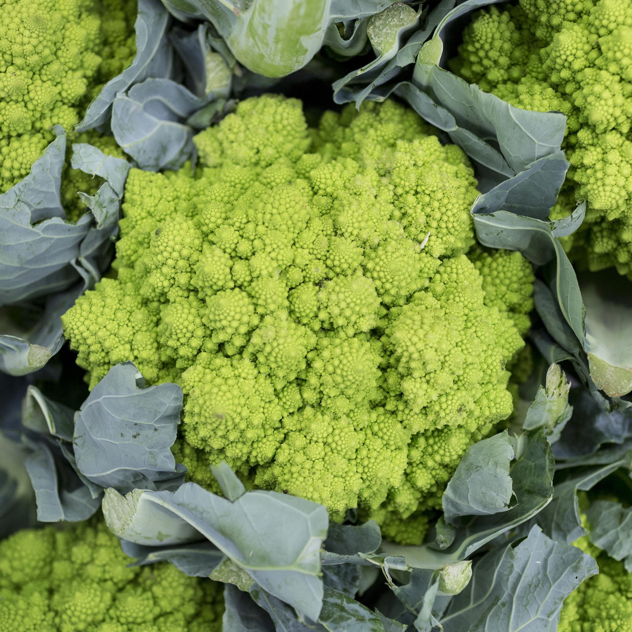 European-Salad-Company-romanesco-cauliflower.jpg