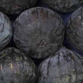 figs-european-salad-company.jpg