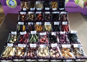 Examples of produce from Brittany.