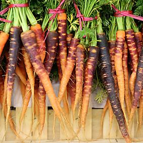 Baby carrots at European Salad Company