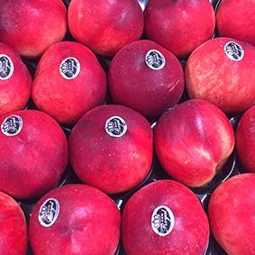 european-salad-company-peaches.jpg