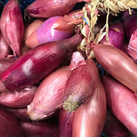 european-salad-company-onions.jpg